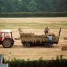 306 hay making Spr Lane Farm.jpg